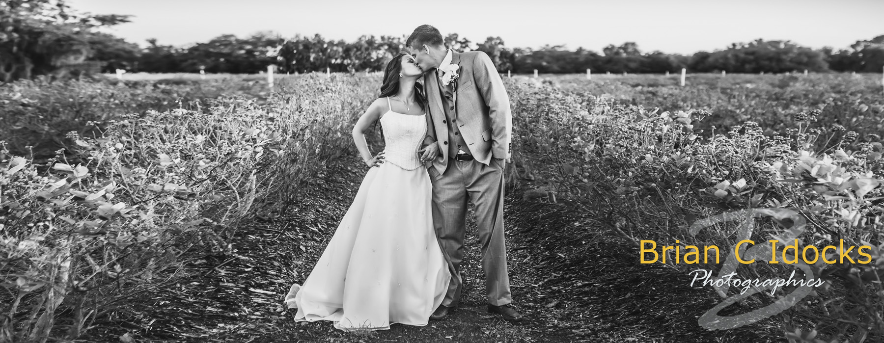 Inexpensive Wedding Photography: Affordable Wedding Photography Packages, Starting At $800