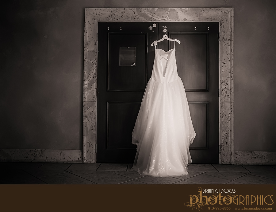 a-la-carte-pavillion-photographer-tampa-wedding-photographer-sheera-wedding-ala-carte-001.jpg
