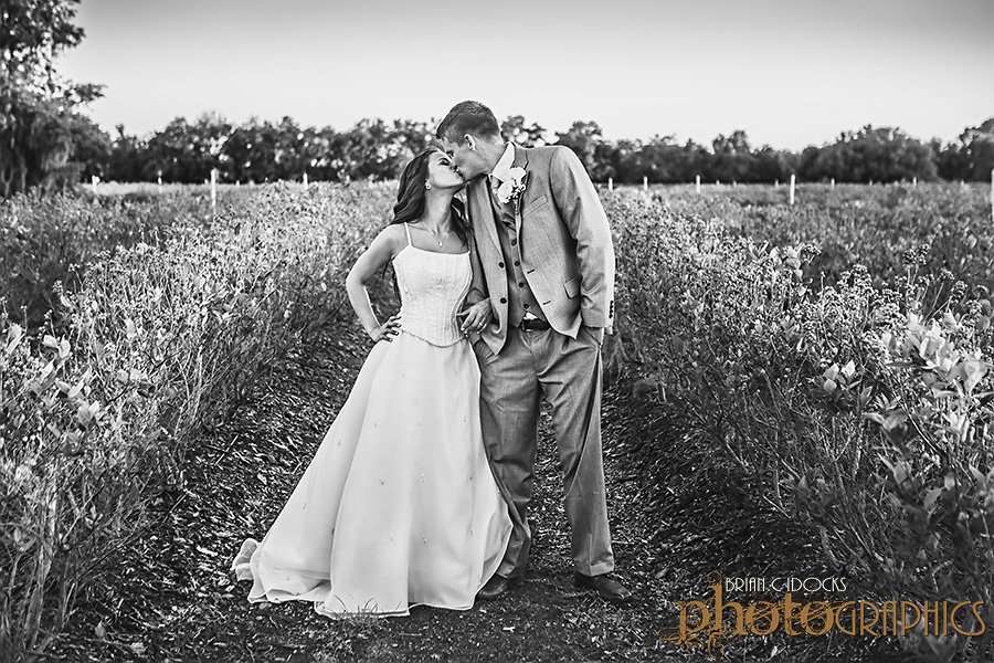 outstanding in their field elopement photography