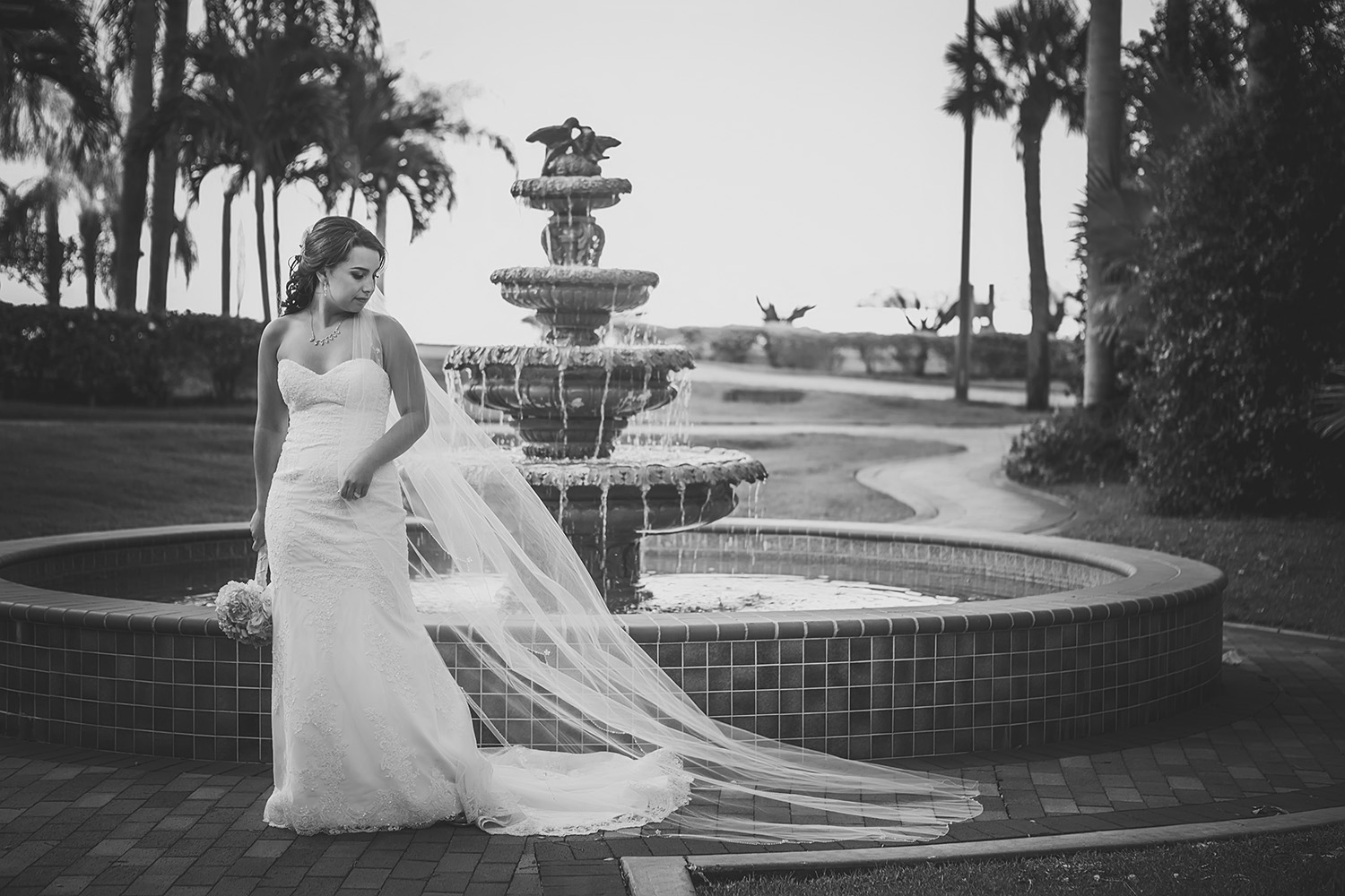 safety harbor resort and spa best wedding venues in tampa bay